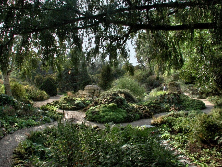 Museum gardens when the garden is an exhibit for Jardin plantes paris
