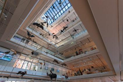 Trento | il MUSE di Renzo Piano