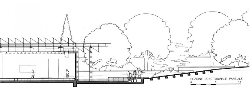 Fondation Beyeler Renzo Piano transverse section