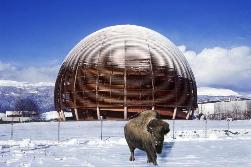 Globe Science Innovation timber pavilion CERN exterior 1