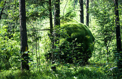 Sphere Land Art Ledro