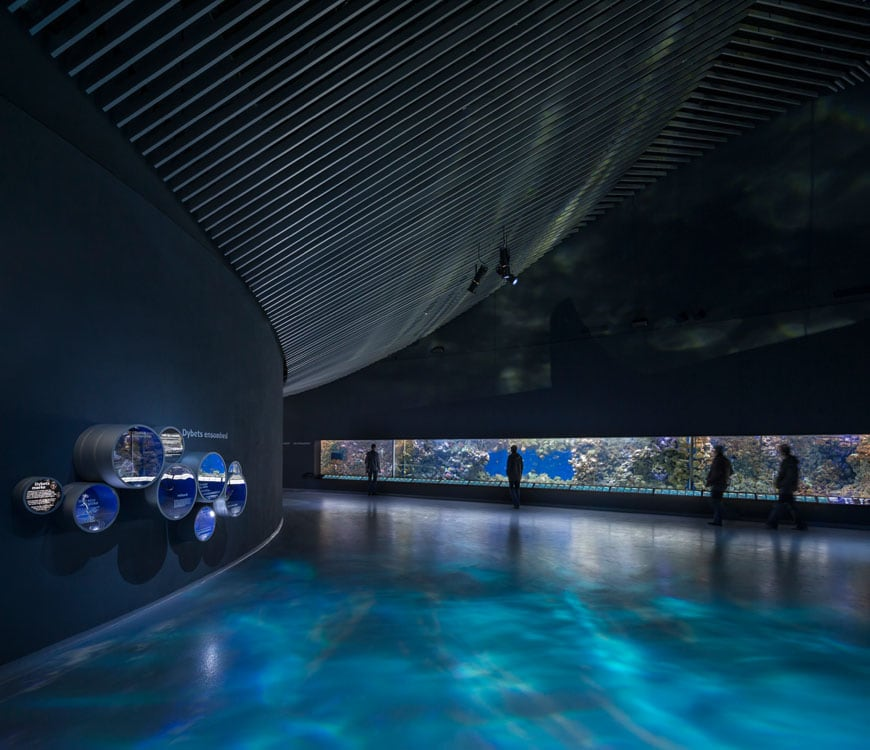 blue-planet-national-aquarium-denmark-copenaghen-interior-02