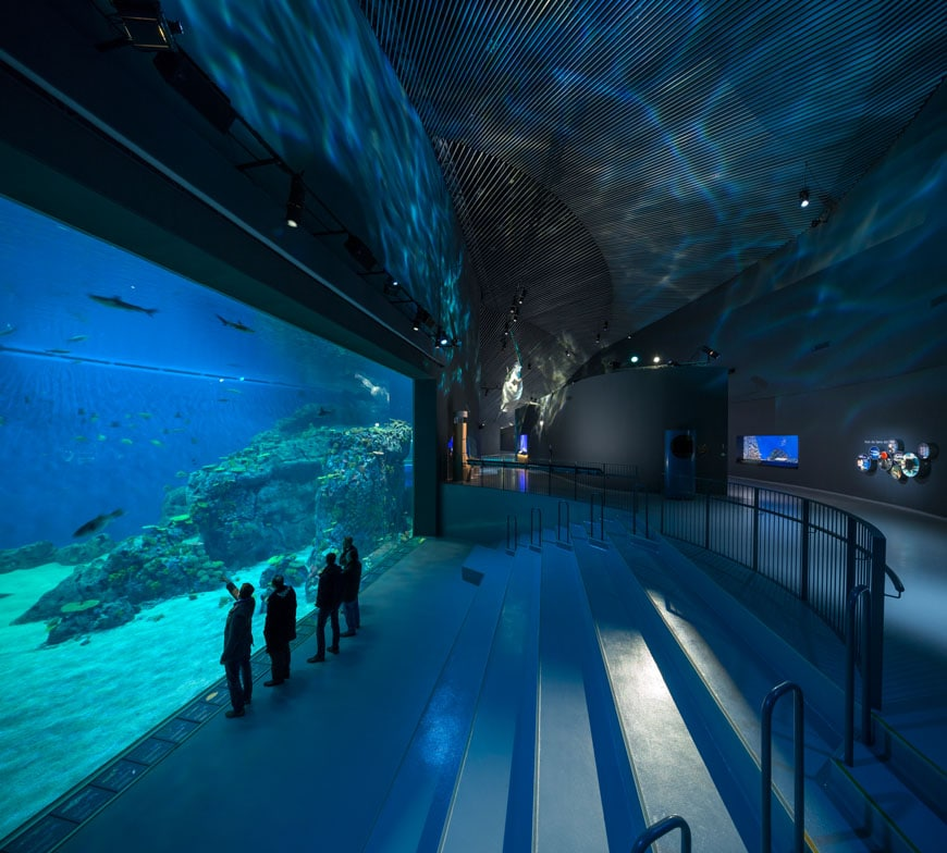 blue-planet-national-aquarium-denmark-copenaghen-interior-03