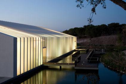 Mora Freshwater Aquarium