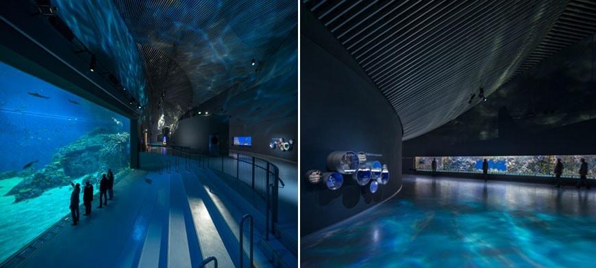 Denmark aquarium 07