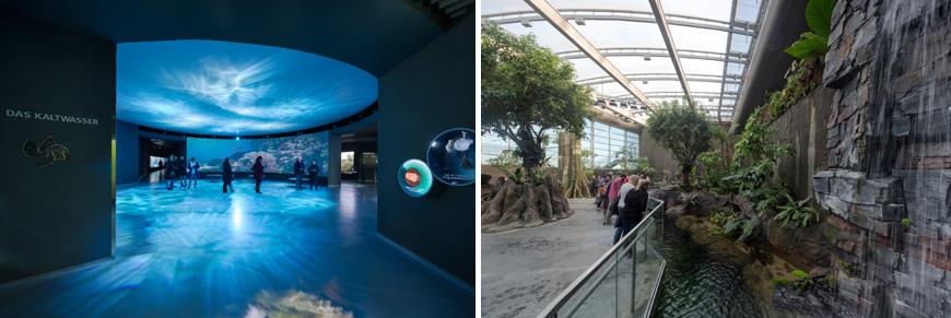 Denmark aquarium 08