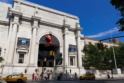 american museum of natural history new york 01