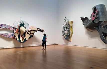 Modern Art Museum Fort Worth 07