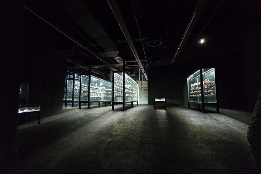 museu blau science museum barcelona 30