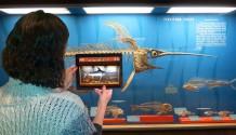skin bones app natural history museum smithsonian 01