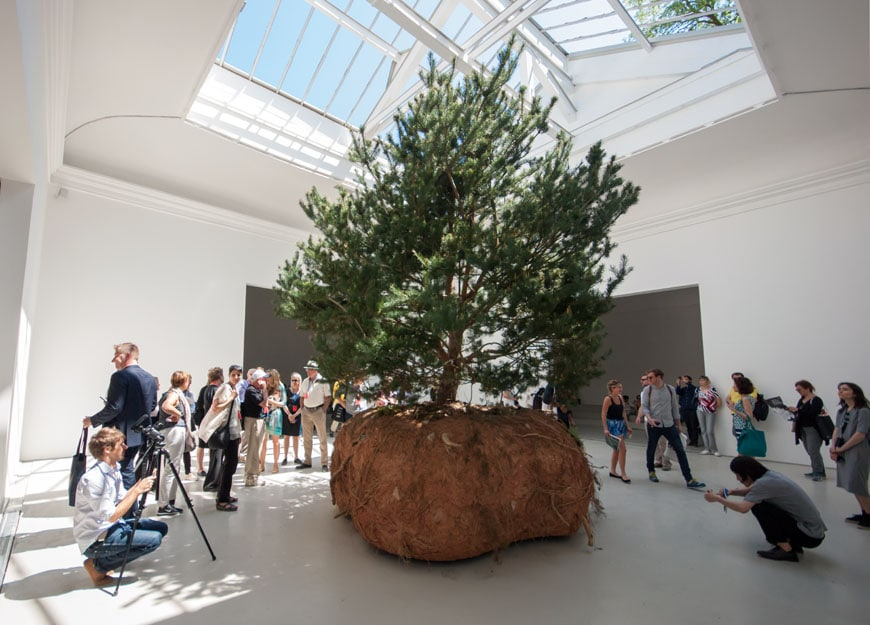 Boursier-Mougenot-France-Biennale-2015-Inexhibit-02