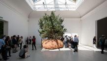 Boursier-Mougenot-France-Biennale-2015-Inexhibit-04