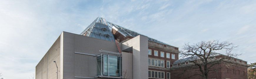 Harvard-Art-Museums-Expansion-Renzo-Piano 04
