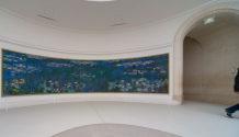 Valery Romanov - musee orangerie paris