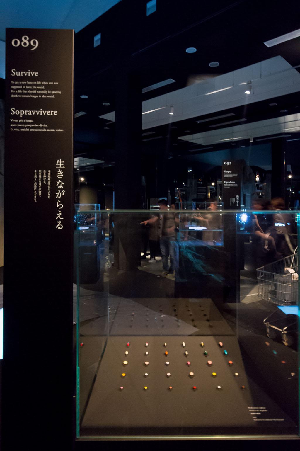 Pillls Prehistory exhibition Branzi Hara 21st Triennale Milan 15