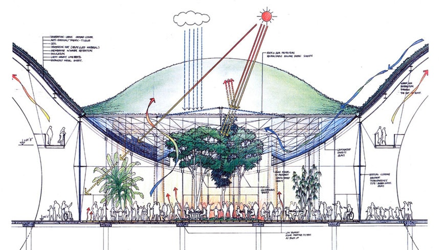 California Academy Sciences Renzo Piano cross-section