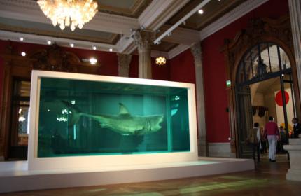 Oceanographic Museum Monaco 07