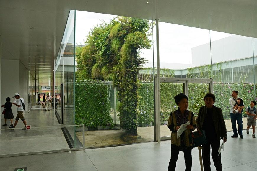 Patrick Blanc Green Bridge installation Kanazawa museum 01