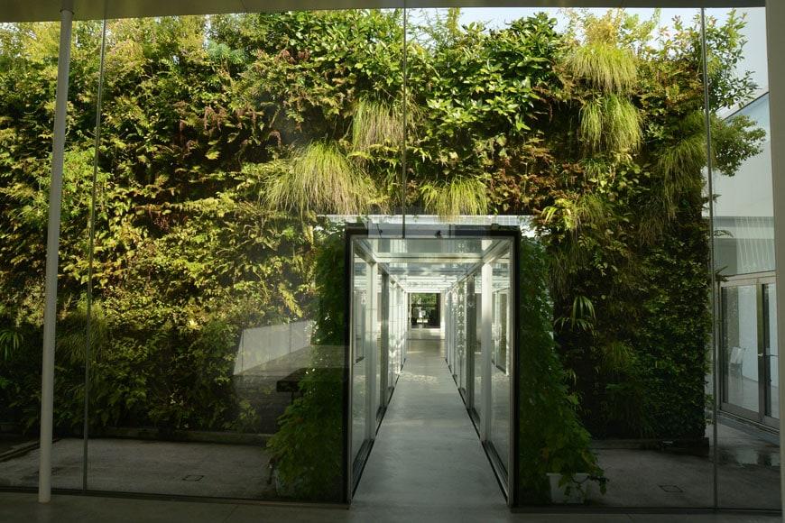 Patrick Blanc Green Bridge installation Kanazawa museum 04