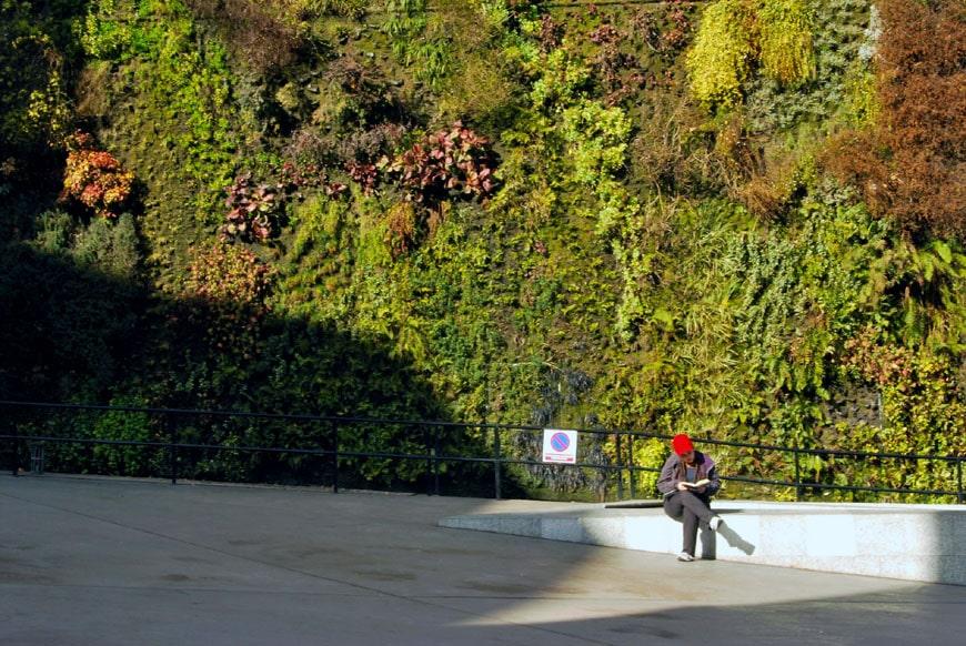 Patrick Blanc vertical garden Caixaforum Madrid 04