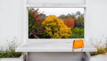 Villa Savoye Poissy Le Corbusier landscape Inexhibit