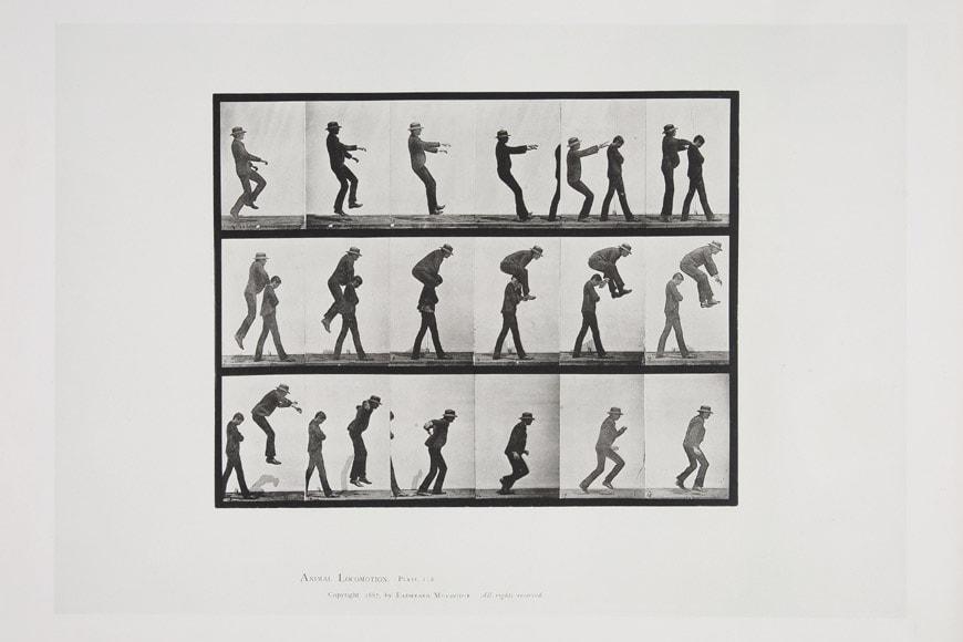 museum-der-moderne-salzburg-photo-kinetics-Muybridge
