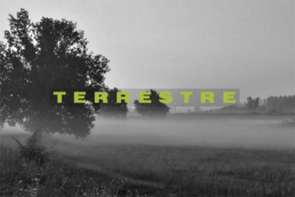 terrestre-feature-image-elenco