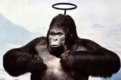 utopie-radicali-palazzo-strozzi-00-gorilla-cover