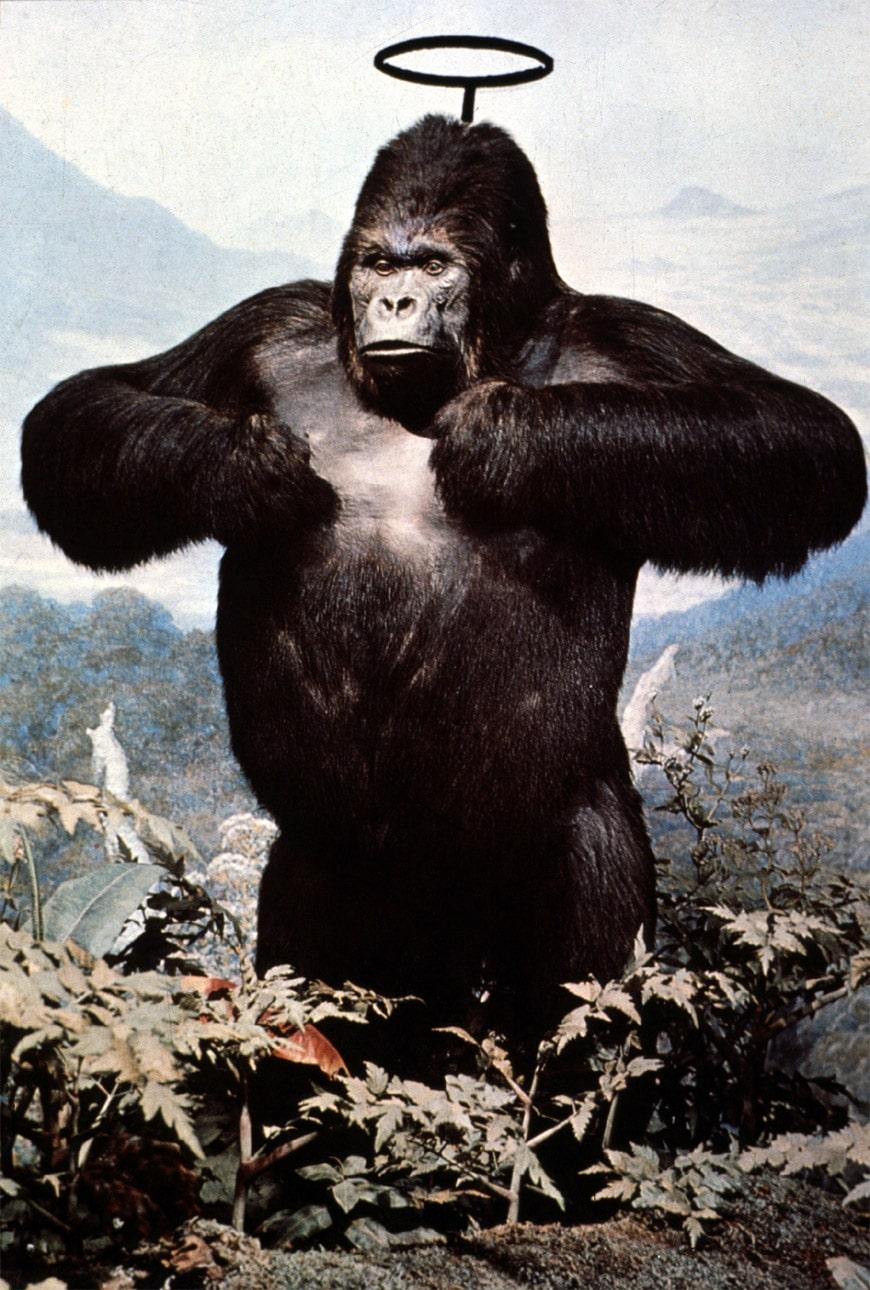 utopie-radicali-palazzo-strozzi-gorilla-Mendini