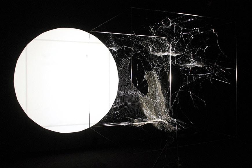 25-MAXXI-Gravity-saraceno-Arachnid-ph-Cecilia-Fiorenza