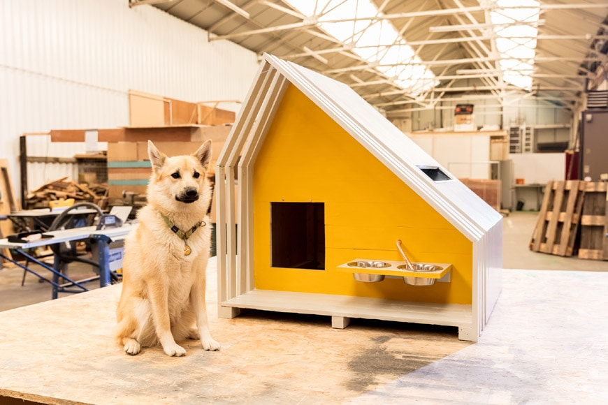 Condy Lofthouse Architects and Anne Robinson dog kennel design