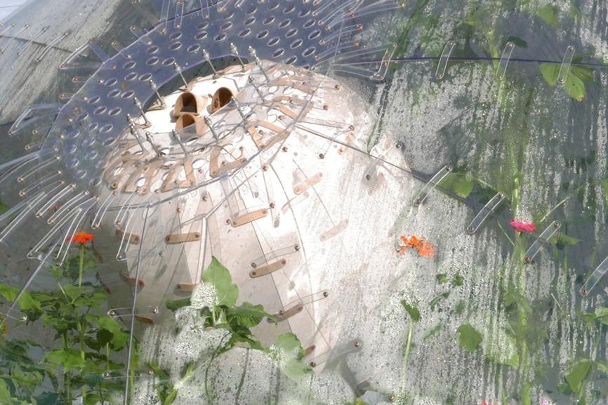 shjworks-biotope-cover-image