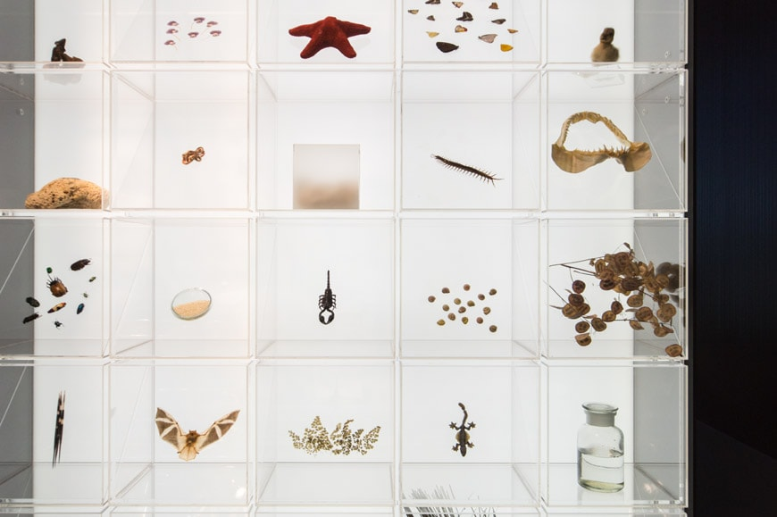 Broken Nature XXII Triennale Milano Reliquaries Bay Bruno Inexhibit