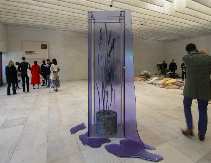 Ane Graff, The State of Inflammation, installation view, Nordic pavilion, 58th Venice Art Biennale 2019 Inexhibit