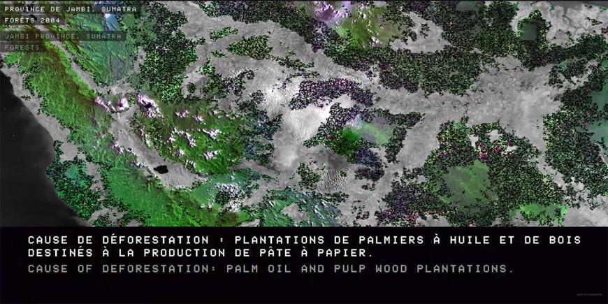 Fondation-Cartier-Paris-Exhibition-Trees-EXIT-01