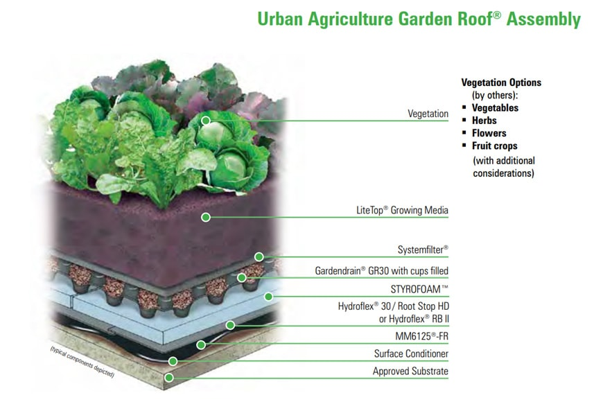 Vegetable roof garden Gary Comer Youth Center Chicago growing medium and system structure