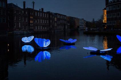 Amsterdam-light-fest-2019-masamichi-shimada-butterfly