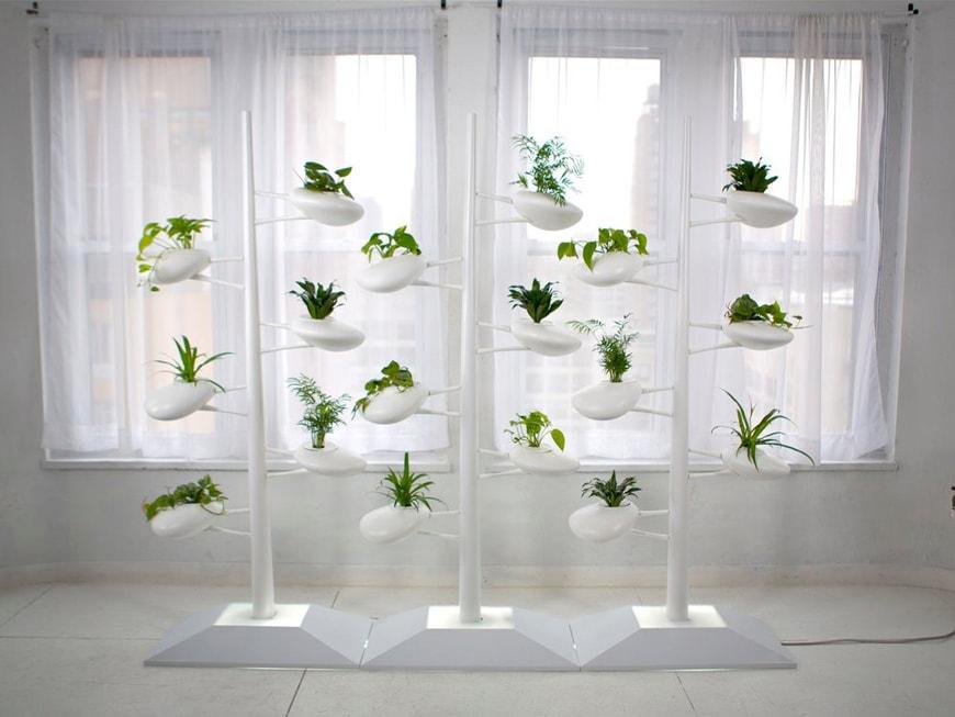 Danielle Trofe, Hydroponics Vertical Garden