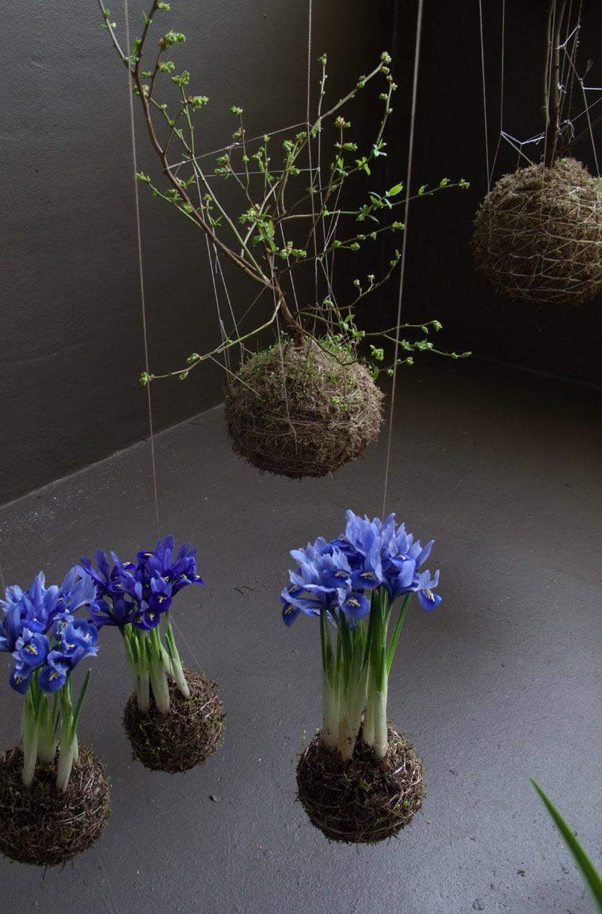 Inexhibit-home-gardens-suspended-Fedor-van-der-Valk-aerial-garden-2