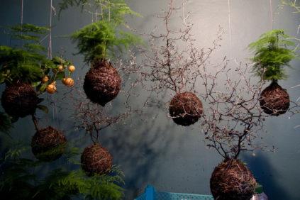 home gardens suspended-Fedor-van-der-Valk aerial garden