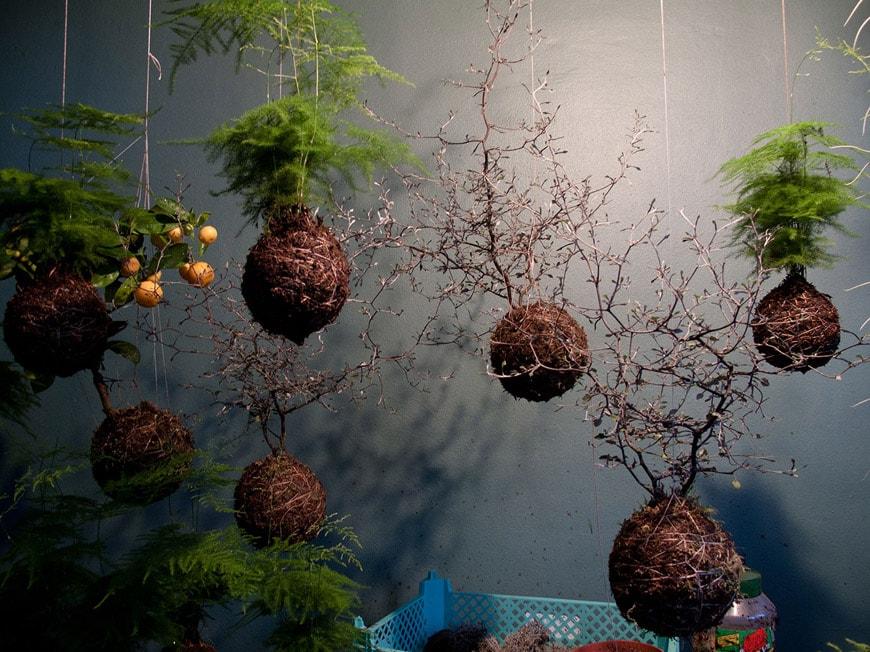 Inexhibit-home-gardens-suspended-Fedor-van-der-Valk-aerial-garden