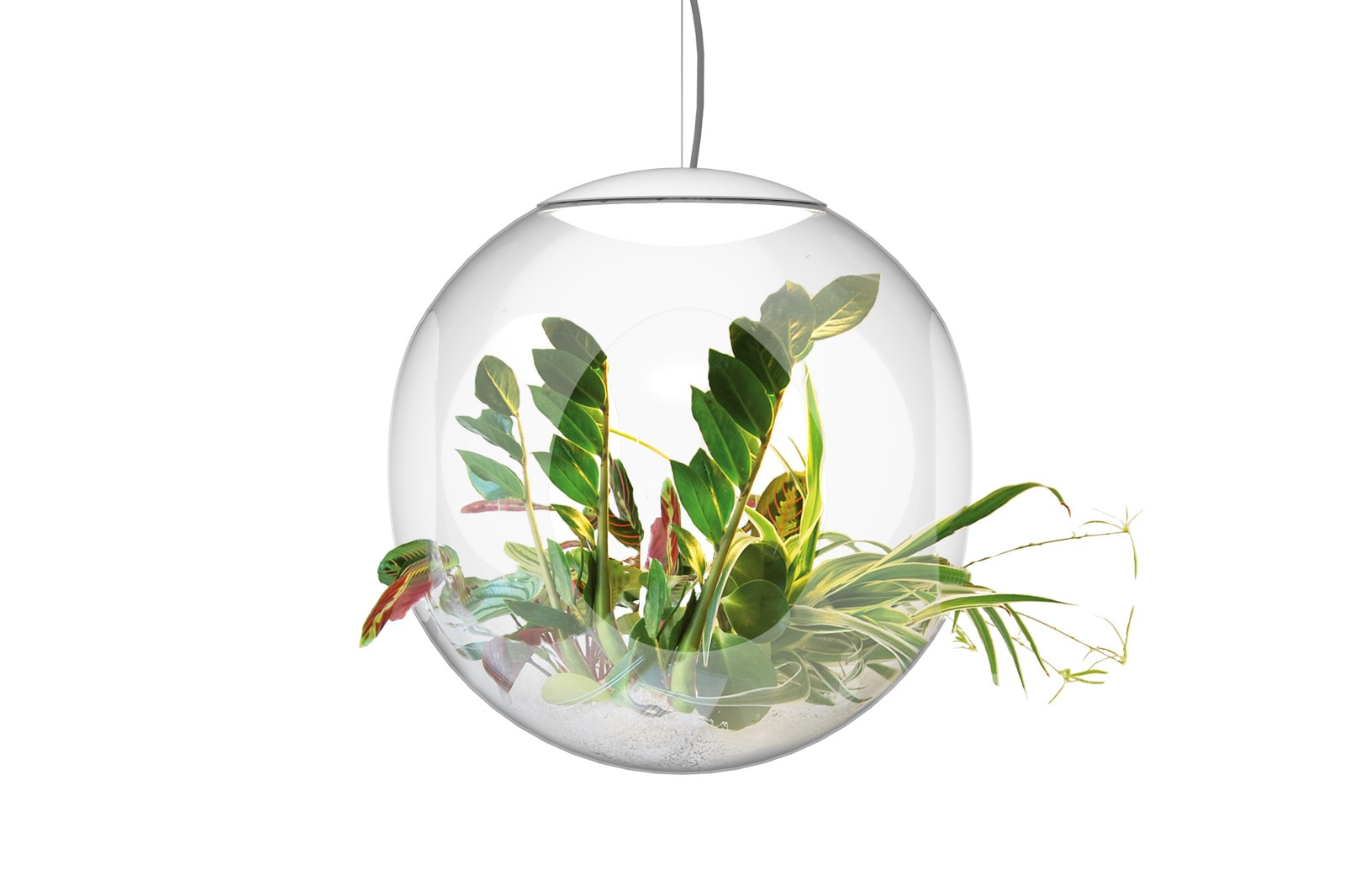 suspended plant container babylone by greenworks
