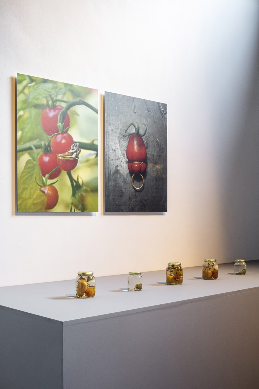 nature-morte-nature-vivante-cid-installation-view-4-c-tim-van-de-velde