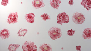 nature-morte-vivante-cid-files_fichier_14057_wallpaper-roses-still-2015-4-c-lieve-van-stappen- (1)