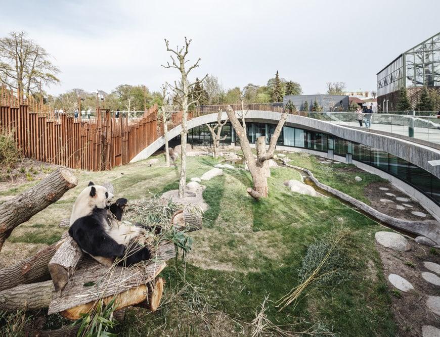 Panda House Copenhagen Zoo BIG Bjarke Ingels 05