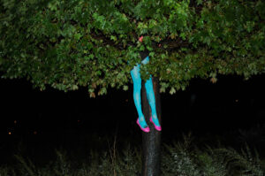 Muse-Tree-Time-photo-by-Cecylia-Malik-01
