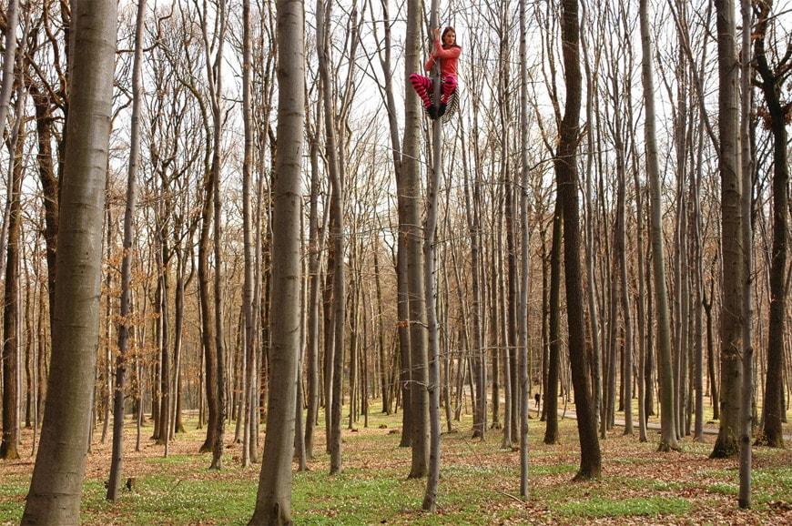 Muse-Tree-Time-photo-by-Cecylia-Malik-02