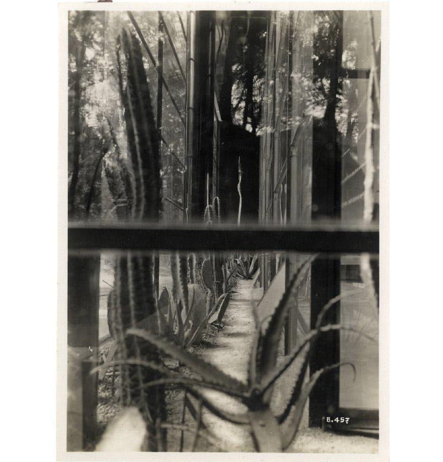 Casa-Elettrica-Monza-1930-serra-dettaglio-Triennale-Milano-foto-Girolamo_Bombelli
