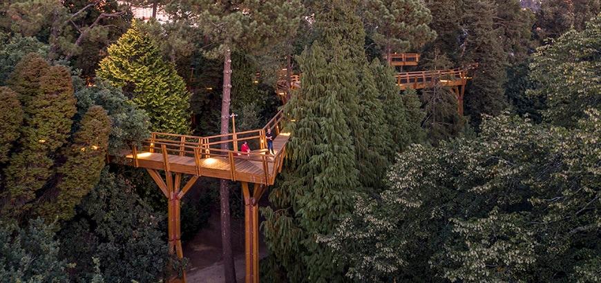 Parque de Serralves, Porto, treetop walk, Alvaro Siza Vieira Carlos Castanheira