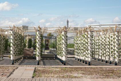 NU-Paris, world's largest rooftop urban farm, aquaponic columns 3